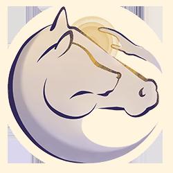 Stessy Billy – Ostéopathe et bien-être animal